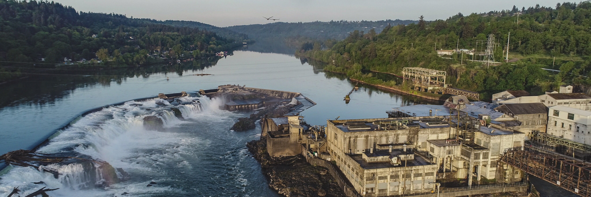 Aerial shot of Willamette Falls with two bald eagles